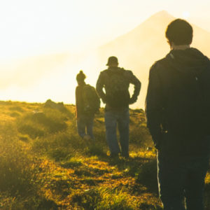 A Narrative Guide in the Wilderness